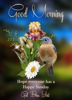 Good Morning Images For Whatsapp Good Morning Sunday Pictures, Blessed Sunday Morning, Good Morning Posters, Good Morning Friends Images, Sunday Morning Quotes, Good Morning Happy Saturday, Good Morning Nature, Happy Sunday Quotes, Morning Blessings