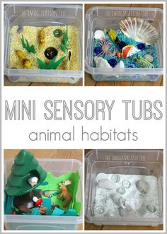 Habitat Mini Sensory Tubs Mini Sensory Tubs - Animal habitats using colored rice and various small objects that suit that animal's habitatMini Sensory Tubs - Animal habitats using colored rice and various small objects that suit that animal's habitat Sensory Tubs, Sensory Boxes, Sensory Activities, Sensory Play, Preschool Activities, Motor Activities, Sensory Diet, Animal Activities For Kids, Summer Activities