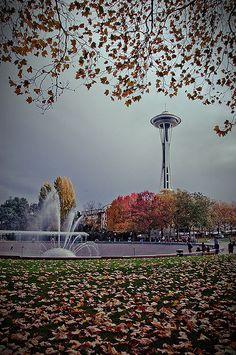 Fall in Seattle, Washington