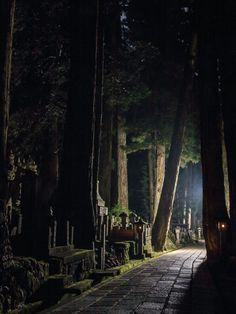 "a-loss-forever-new: ""Koyasan (graveyard) - Wakayama, Japan "" Foto Nature, All Nature, Wakayama, Old Cemeteries, Graveyards, Art Japonais, Parcs, Japanese Culture, Japan Travel"