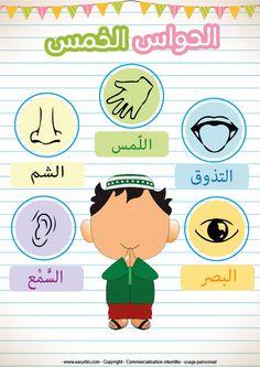 L'ouïe (السَّمْع), l'odorat (الشم), le goût (التذوق), le toucher (اللّمس) et la vue (البصر), apprendre les 5 sens à son enfant pour l'aider à comprendre à quoi servent chacun de s…
