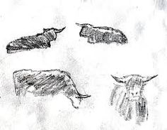 Image result for cow sketches