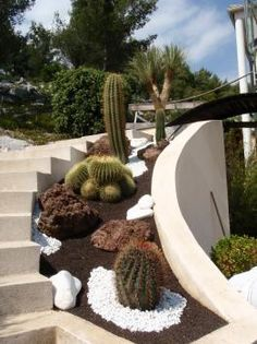 effet contemporain jardin sec fleurs jardins pinterest contemporain jardins et dominique. Black Bedroom Furniture Sets. Home Design Ideas