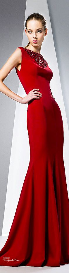 Georges Hobeika ~ Fall Sleeveless Form Fitting Gown, Red, 2015