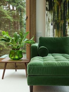 The most beautiful emerald green sofa. And a plant on a table!