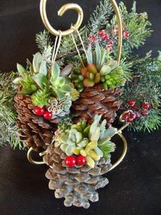 succulent ornaments. I'm going to have to start collecting pinecones.
