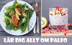 Vi berättar hur dieten fungerar och ger tips på goda och hälsosamma Paleo-recept.