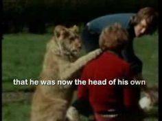 Absolutely the most heartwarming thing I've ever seen. The story of Christian the Lion. Lion Love, Mundo Animal, Beautiful Stories, Inspirational Videos, Big Cats, True Stories, Lions, Make Me Smile, In This World