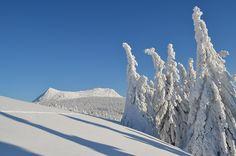 Le Mézenc vêtu de son manteau blanc, au coeur de l'hiver.