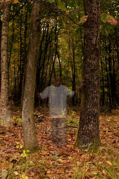 Ghost Photo Tutorial from Rebekah Sews