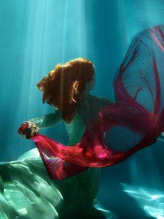 Underwater photography & digital art from Jolene Monheim