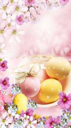 Easter Wallpaper, Love Wallpaper, Iphone Wallpaper, Calander, Easter Wishes, Spring Pictures, Spring Recipes, Happy Easter, Spring Time