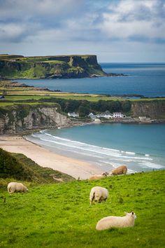 Village of Portbraddan, County Antrim, Northern Ireland.