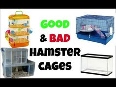 Good and Bad Hamster Cages
