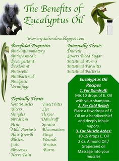 Tips And Techniques For Patchouli Essential Oil blends natural Patchouli Essential Oil, Doterra Oils, Doterra Essential Oils, Essential Oil Blends, Eucalyptus Essential Oil Uses, Young Living Oils, Young Living Essential Oils, Aromatherapy Oils, Aromatherapy Recipes