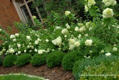 I love this arrangement - very structured in the front, with lush, wild hydrangea behind it