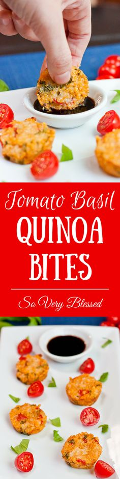 With the basil, tomatoes, and mozzarella, these are like tiny little caprese salads…in quinoa bite form. Especially when you dip them in balsamic vinegar. From www.soveryblessed.com #quinoa #basil #healthy #recipe