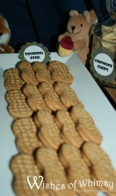 squirrel food (nutter butter) peanuts... Fun family party blog to browse with inexpensive DIY ways to celebrate