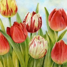 Lisa Alderson - LA - red tulips 2.jpg