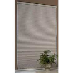 Redi Shade 40.625-In W X 72-In L Natural Blackout Cellular Shade Z14c4