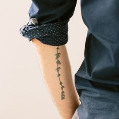 Tattly: Designy Temporary Tattos - Thyme                                                                                                                                                                                 More