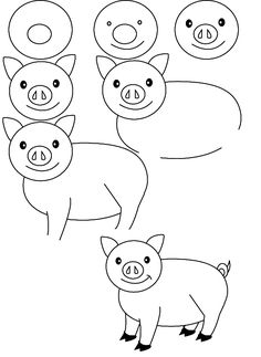 Basic drawing of pig