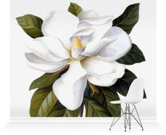 Bull Bay (Magnolia randiflora), watercolour and bodycolour on vellum, by George Dionysus Ehret, England, 1743.. Our wall murals bring stunning imagery to life on a large scale.
