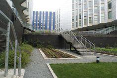 University of Washington, Mercer Court Student Housing