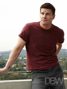 I can never choose between David Boreanaz circa Angel in Buffy, or now-ish as Booth in Bones. So I just picked this one.