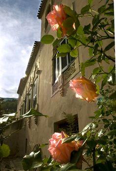 Estas rosas del Hotel con encanto Masia La Mota son de un aroma entrañable. Son el perfume que te recibe antes de entrar a recepción del hotel.