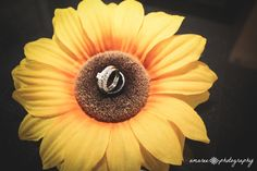 Wedding Ring And Sunflower Photos