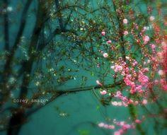 china floral