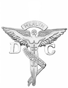 NursingPin - Doctor of Chiropractic Medicine DC Graduation Pin in Sterling Silver ** To view further for this item, visit the image link. (This is an affiliate link) #ILoveJewelry