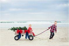 Christmas Tree in Wagon   San Diego Family Photography
