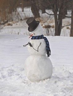 Snowman on his cellphone!