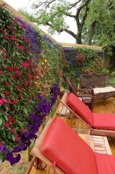 Top 50 Best Cheap and Easy DIY Wall Gardens Outdoor Inspirations http://goodsgn.com/gardens/50-best-cheap-and-easy-diy-wall-gardens-outdoor-inspirations/