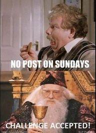 Dumbledore win!