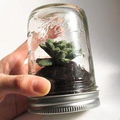 mason jar succulent...cool gift idea