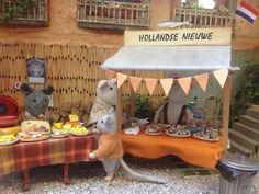 Cheese stand. Amazing Mouse House in Amsterdam Central Library.