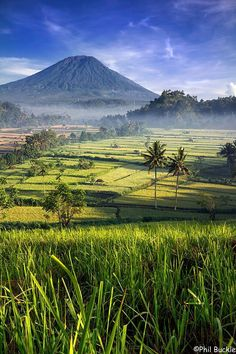 Bali, Gunung Agung in the background || in Indonesia !!!