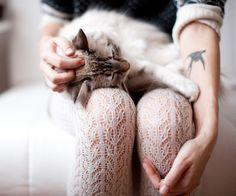"""Collants """"dentelle"""", originaux et beaux #collants #pantyhose"""