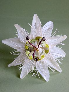 "From ""Art: Textiles&Paper"": Jude Miller paper flowers"