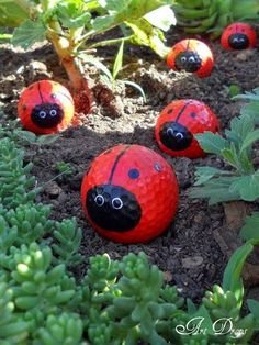 Golf balls painted as ladybugs...a cute idea for a kid's garden! For my son-in-love and my glorious grands.