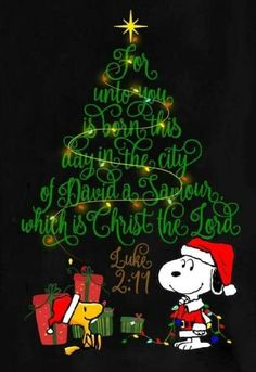 Snoopy and Woodstock on Christmas Eve: Have a Merry Christmas and a Blessed New Year. — John and Gail Kremer For unto you is born this day in the city of David a savior which is Christ the Lord.