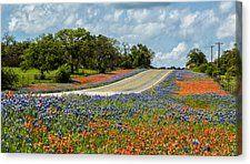 Texas Highways Canvas Print by Stephen Stookey