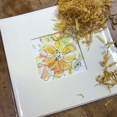 Hand painted Confetti Flower Field Greetings Cards by artist Hayley Reynolds. Designed and made exclusively for The Real Flower Petal Confetti Company! Real Flowers, Colorful Flowers, Beautiful Flowers, Daffodil Wedding, Popular Wedding Colors, Pen Design, Delphinium, Flower Petals, Daffodils