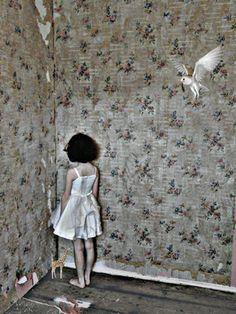 "Saatchi Online Artist Alexandra Gallagher; New Media Art, ""Owl"" #art"