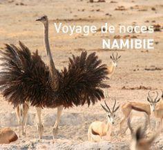 » Mon TOP 5 des hôtels en Namibie