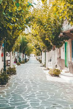 Take the boat from Ikaria island and explore Fourni, a cluster of small islands with so many hidden gems! Ikaria Greece, Chios Greece, Greek Flowers, Thasos, Forest Mountain, Greece Travel, Greece Trip, Greece Islands, Small Island