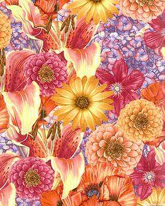 Abbey's Garden - Floral Medley - Multi/Brigh